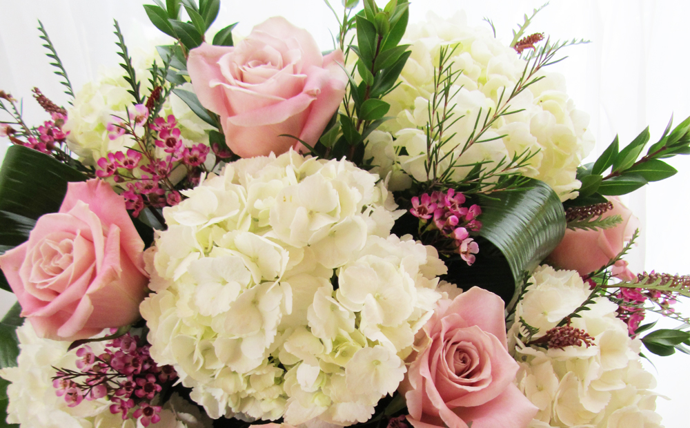 Primavera flowers more ltd primavera loading mightylinksfo